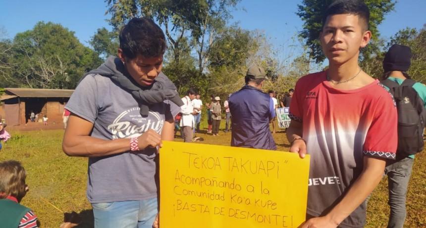 Comunidades Mbya Guaraní de Misiones resisten y denuncian la destrucción del bosque nativo por parte de empresa forestal
