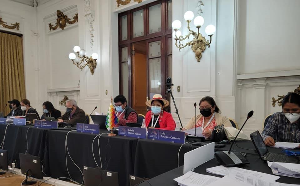 Chile: Alianza derecha e indígenas del norte para reducir representación mapuche en Convención Constitucional